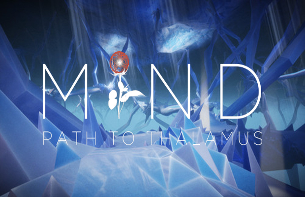 Read more about the article Solution pour Mind Path Of The Thalamus
