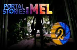 solution pour Portal Stories Mel a