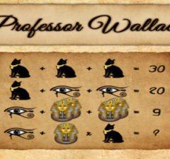 solution pour Professor Wallace c