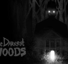 solution Darkest Woods a