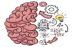solution Brain Test a