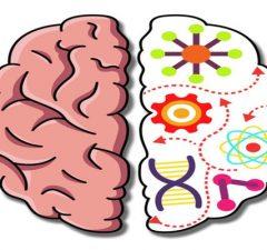 solution Brain Crazy a