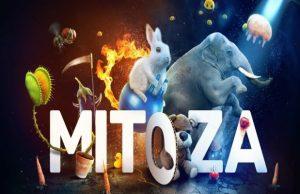 solution Mitoza a