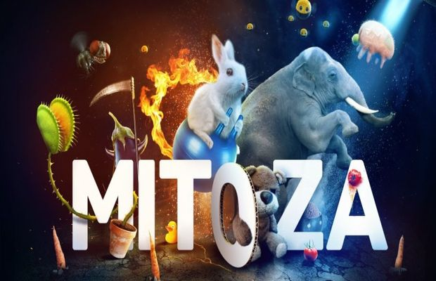 Solution pour Mitoza, étrange, très étrange